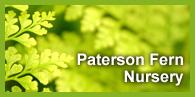 Paterson Furn Nursery